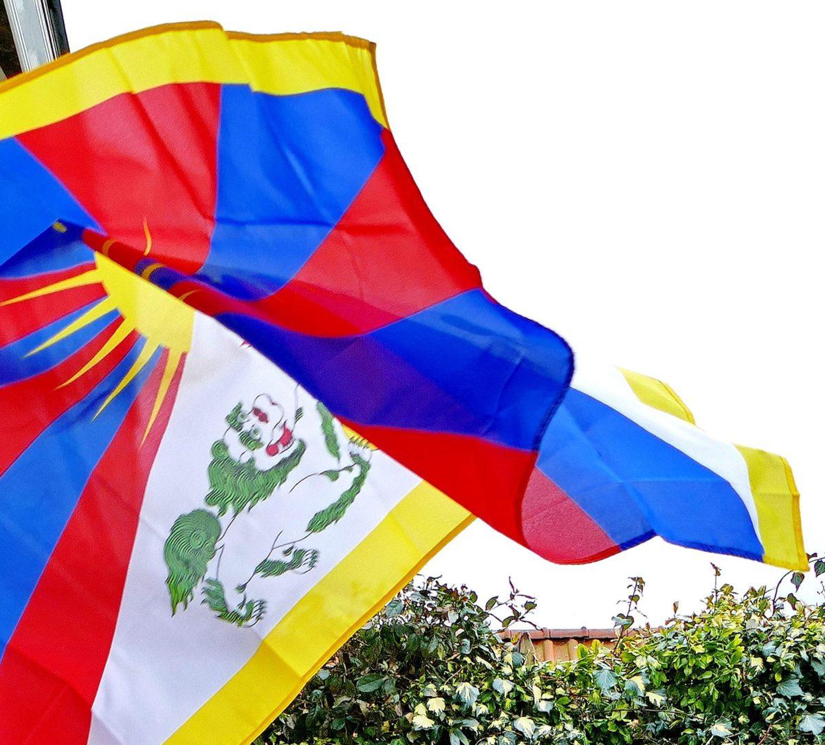 Afbeeldingsresultaat voor dam nederland tibet